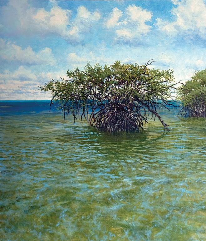 """Everglades: """"Red Mangrove"""""""