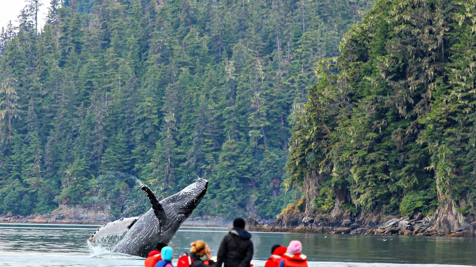 Fjords Of Alaska Cruise Ultimate Expedition 183 National Parks Conservation Association