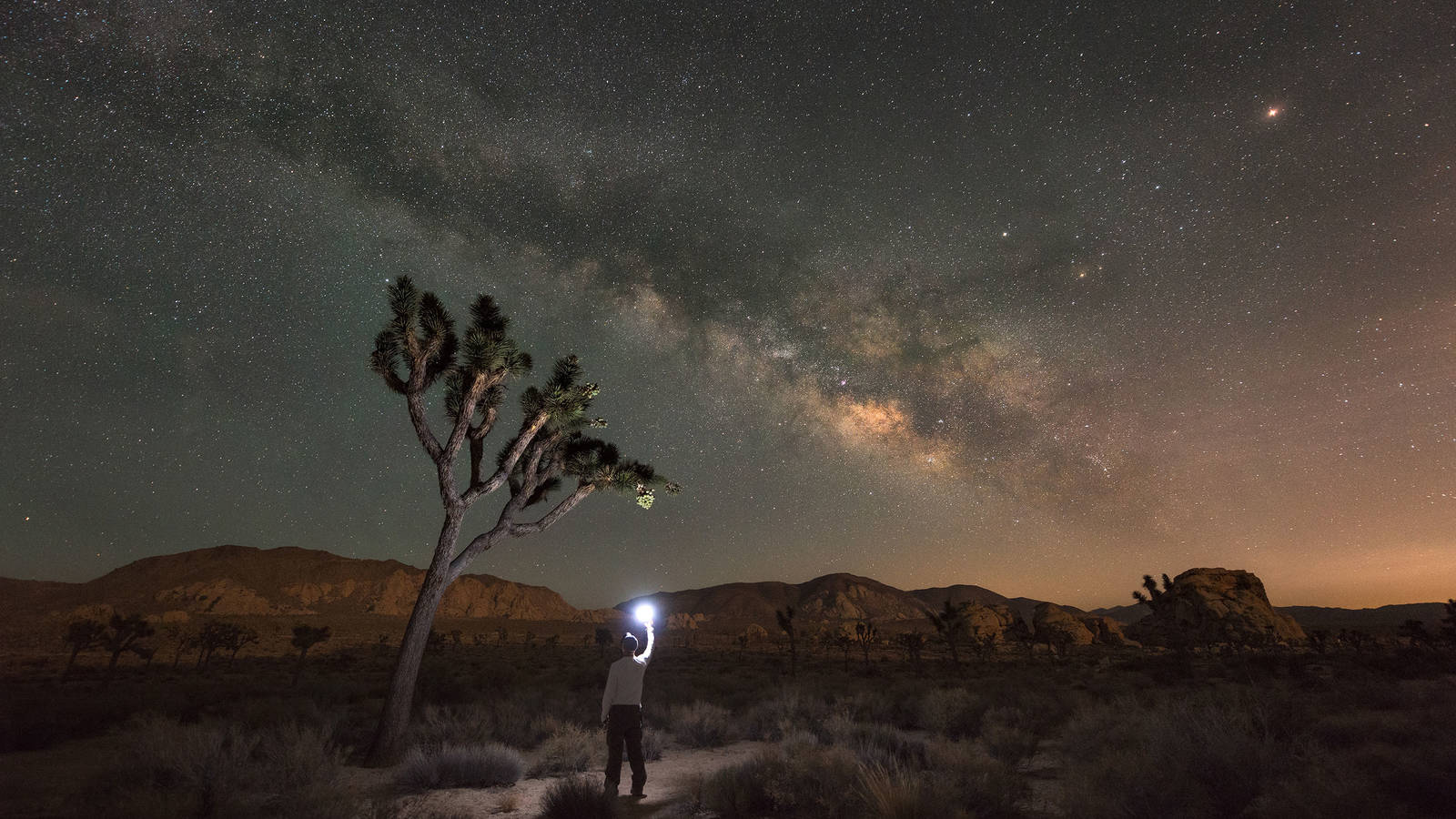 Celebrate Dark Skies at These 18 National Parks · National ...