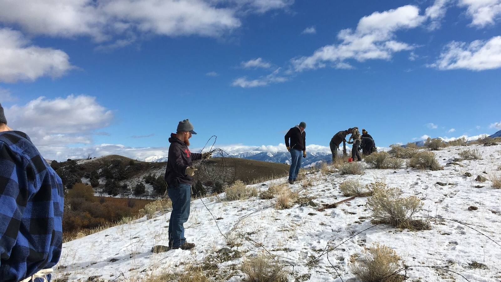 15 veterans from Montana State University worked to protect pronghorn antelope in the Greater Yellowstone Ecosystem by removing more than 2,300 feet of barbed wire fencing that inhibits the pronghorns' migratory path.