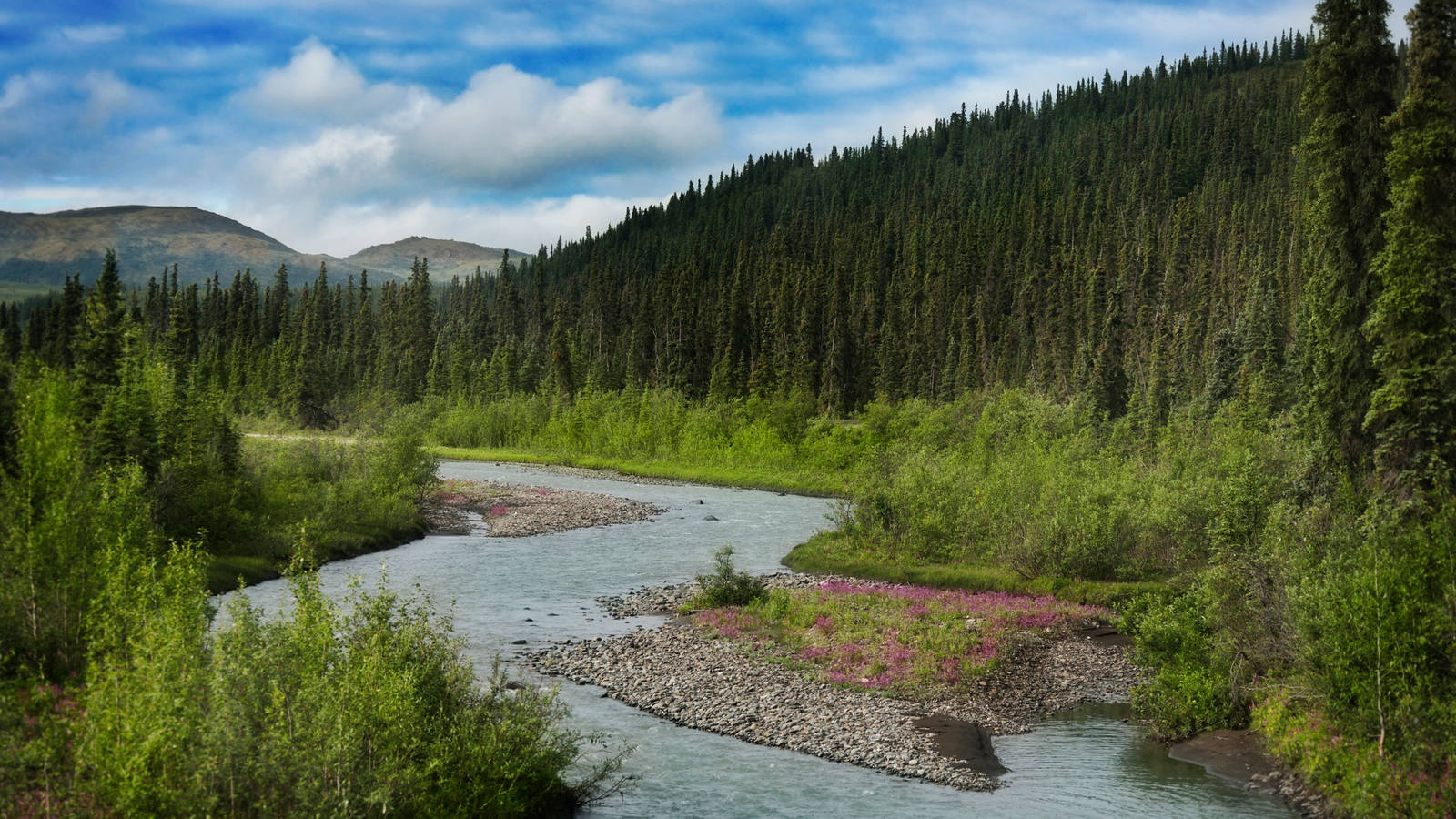 Working to Significantly Reduce Waste at National Parks