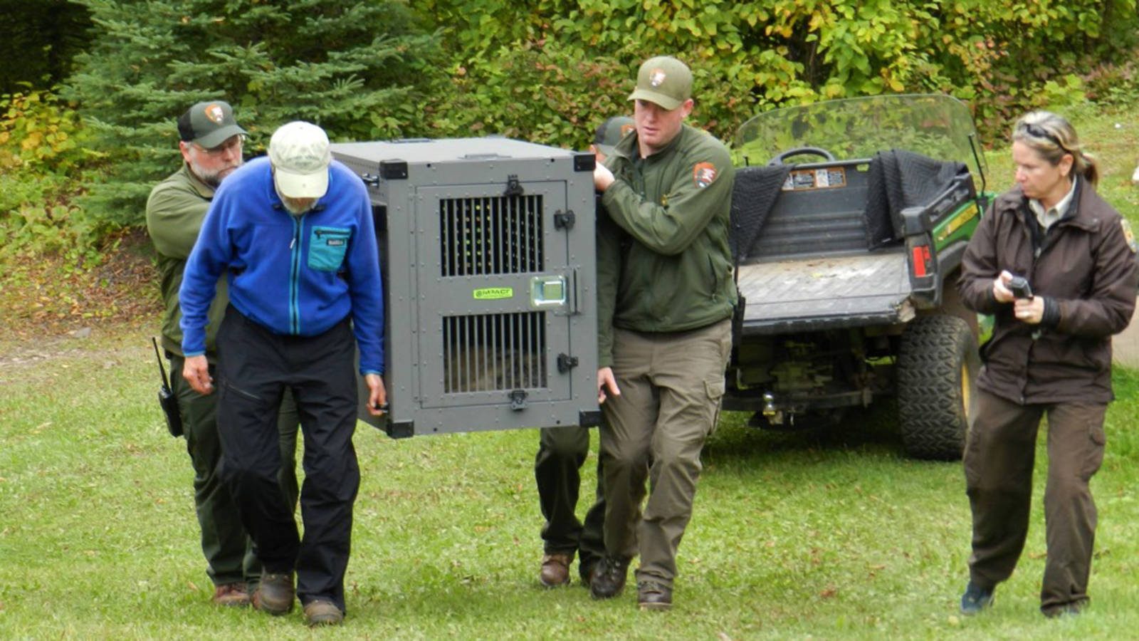 <p>Staff carry the crated wolf to the release site while veterinarian Samantha Gibbs (USFWS) observes.</p>