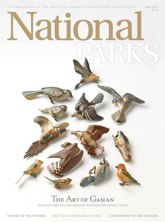 Fall 2011 magazine cover