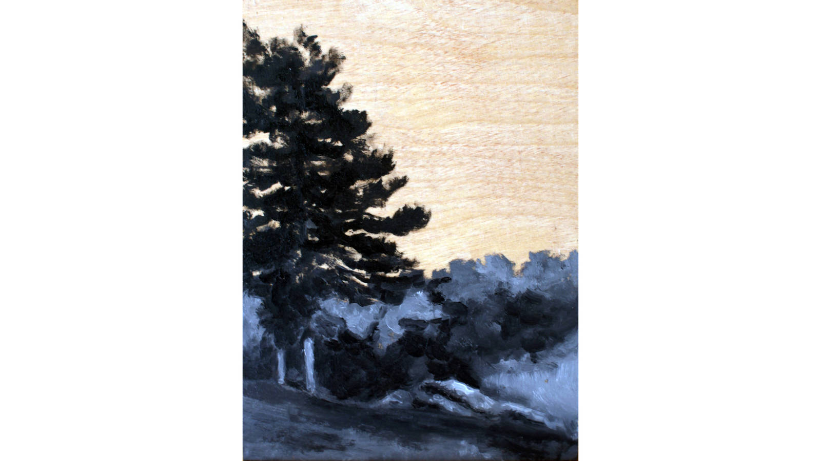 """<h3 style=""""text-align: center; padding: 50px;""""><span class=""""text-Intro-style"""">Hot Springs National Park, Arkansas. Black and white oil paint on wood, 2016.</span></h3>"""