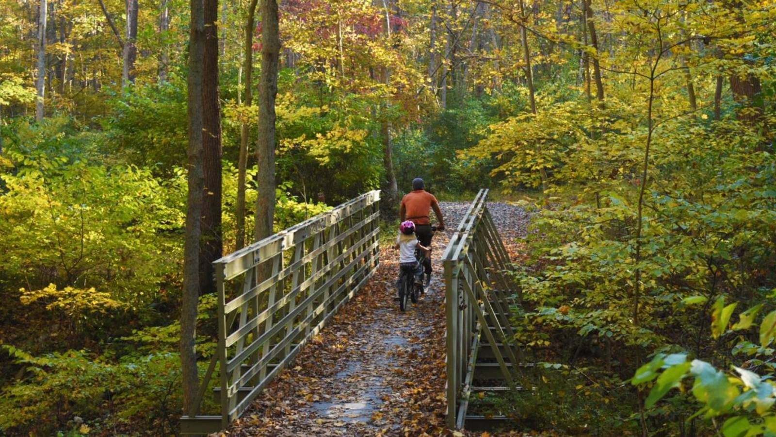 <p>McDade Recreational Trail, Delaware Water Gap National Recreation Area, East Stroudsburg, PA.</p>