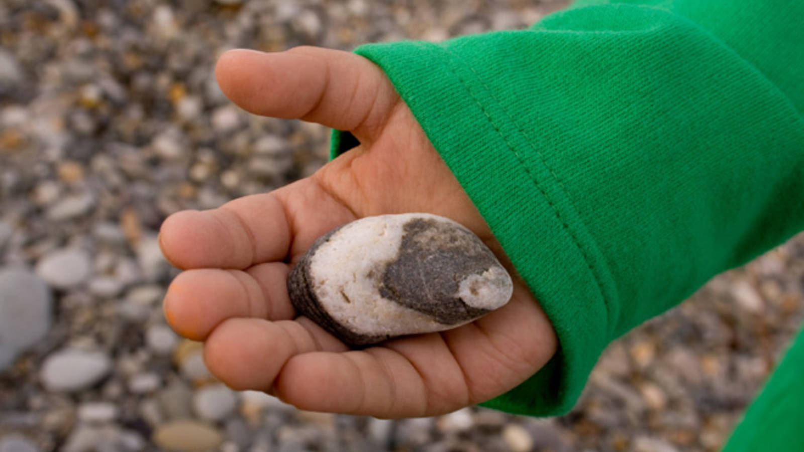 Everybody Needs a Rock, and to Know Where to Find One