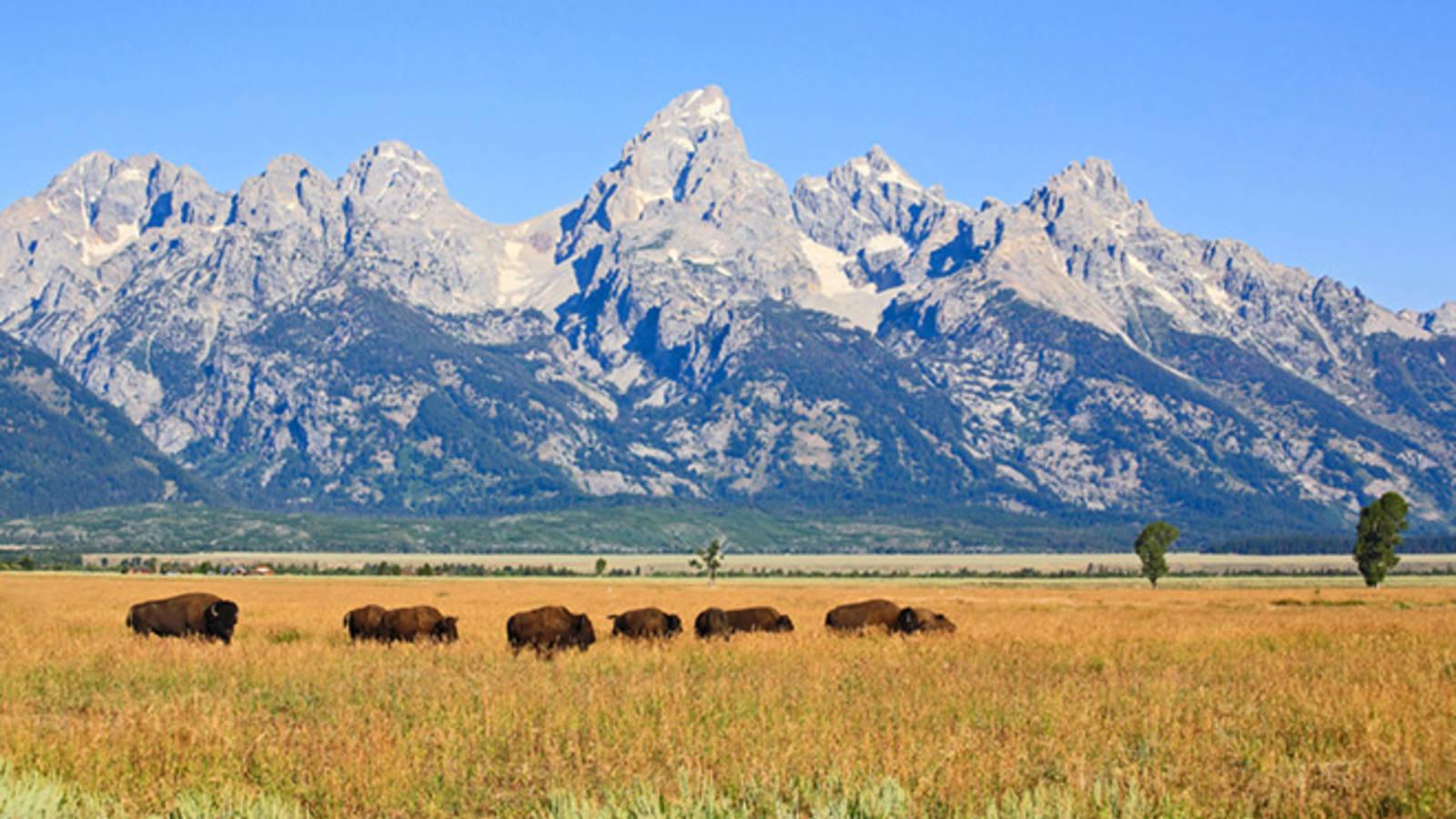 New Agreement Marks Progress Toward Preserving Lands Within Grand Teton National Park