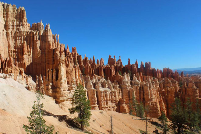 Hoodoos at Bryce Canyon.