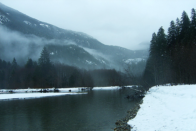 Ross Lake's Thunder Creek in winter.