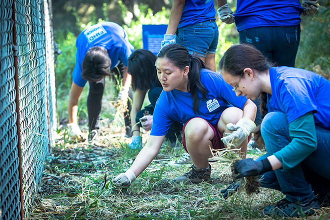 Volunteers with NPCA's Find Your Voice initiative help build a native plant nursery near the Santa Monica Mountains National Recreation Area in California last month. Photo © Alex Pitt.