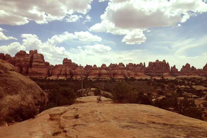"The sandstone spires known as ""the Needles"" in Canyonlands National Park."